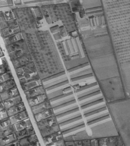 Ketteholm 1954b